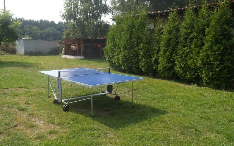 ping pong w plenerze